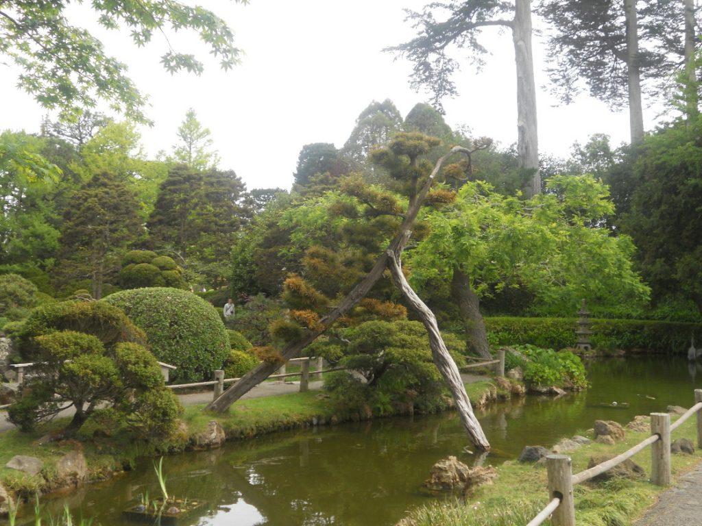 un dimanche au japense tea garden