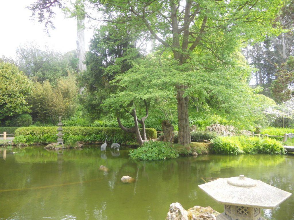 une chouette sortie que le japenese tea garden de San Francisco