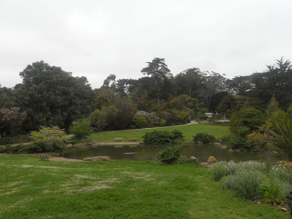 quel magnifique jardin que celui de San Francisco