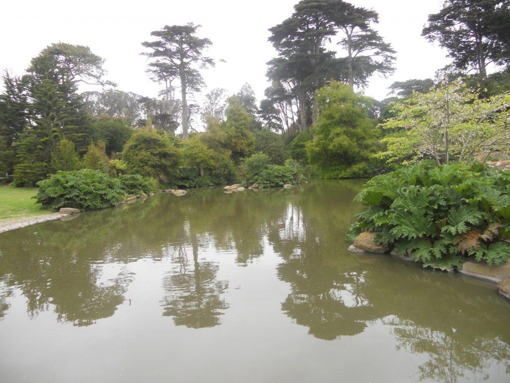 ici le jardin botanique de San Francisco