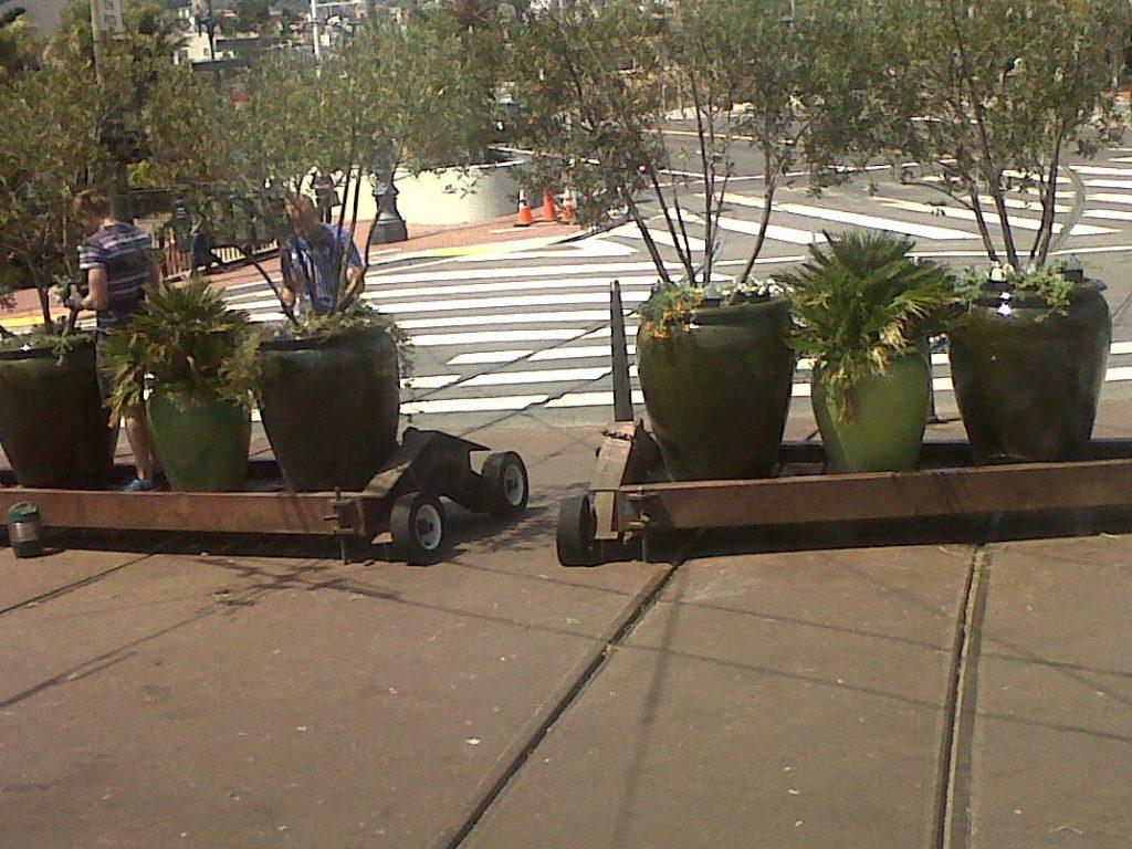 non loin du tramway F il y a aussi des plantes