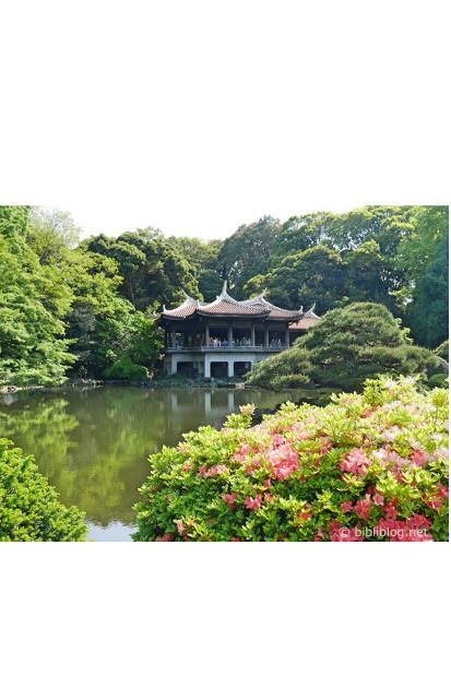 expatriation au Japon