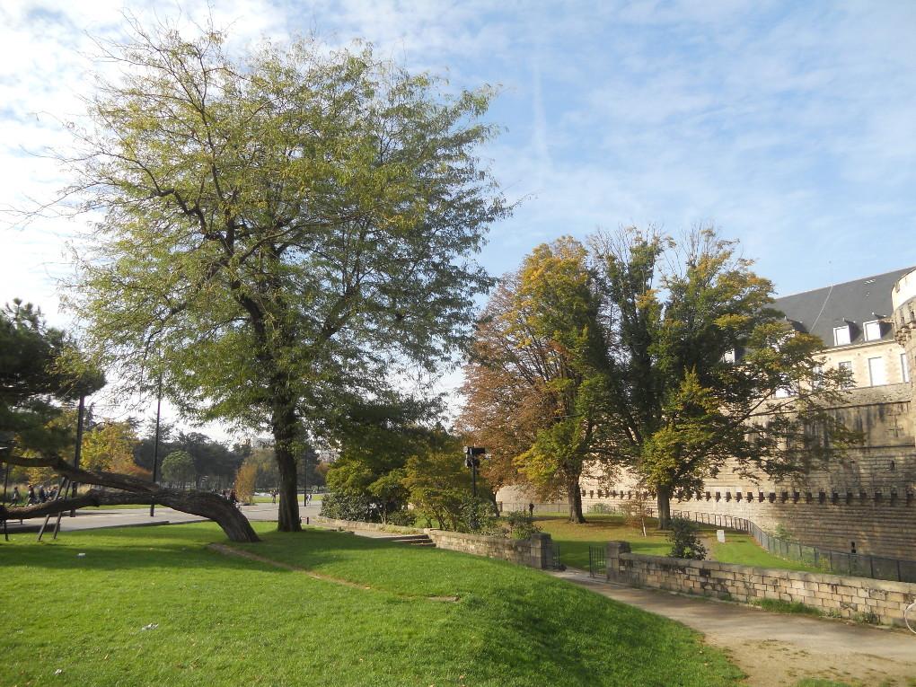 incontournable de visite à Nantes est le château des ducs de Bretagne