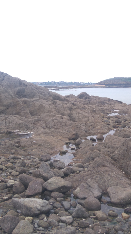 la nature à Saint Malo