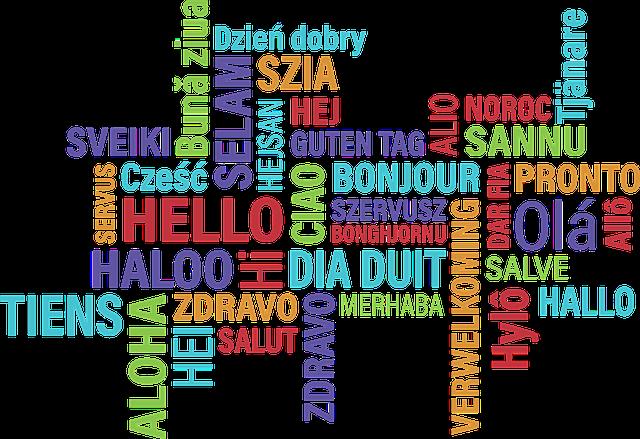 comment dire bonjour en français