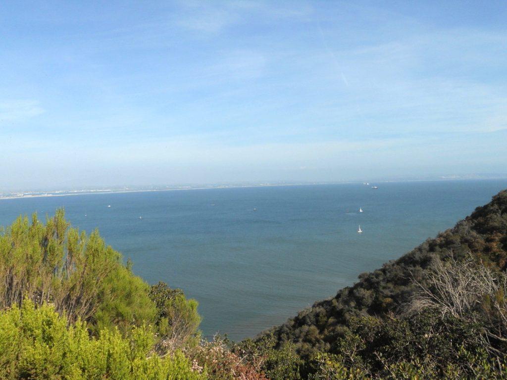 voyage en Californie , San Diego est superbe