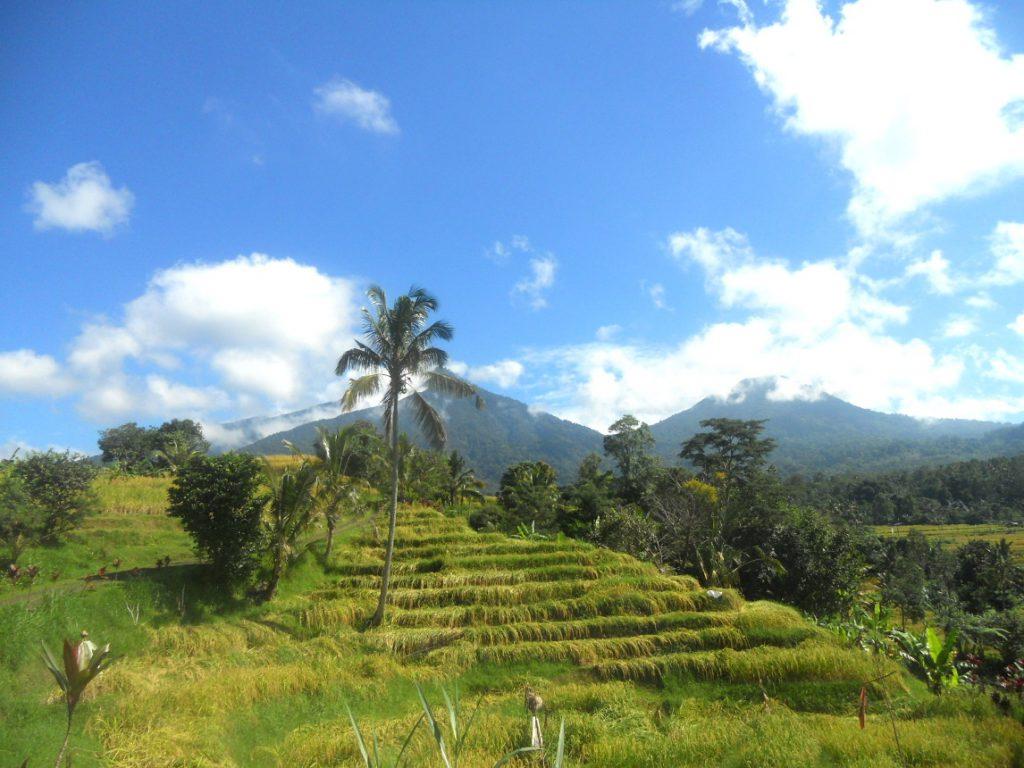 1ères impressions après roadtrip de 10 jours à Bali