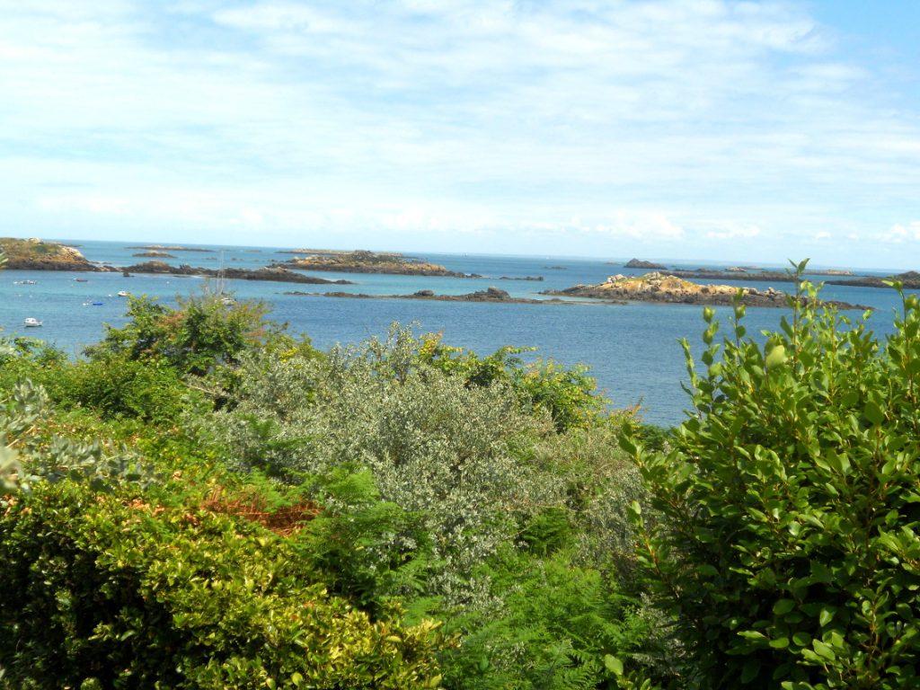 les îles Chausey sont des îles sauvages