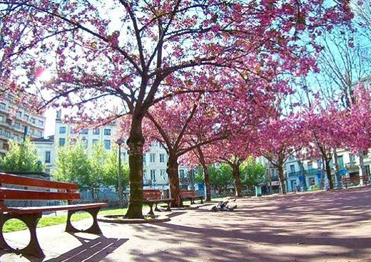 comment c'est de vivre à Saint-Etienne