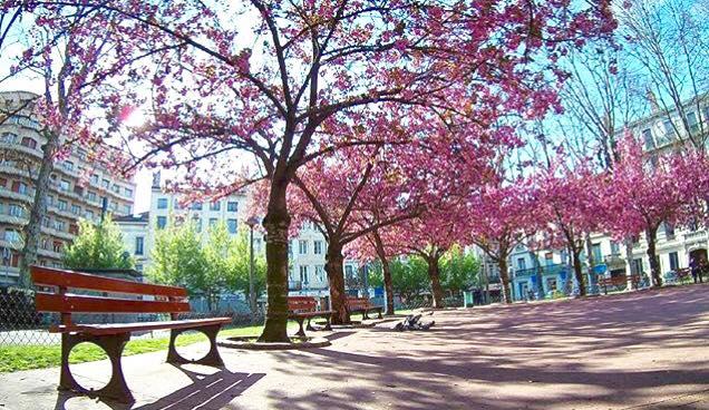 vivre à Saint-Etienne