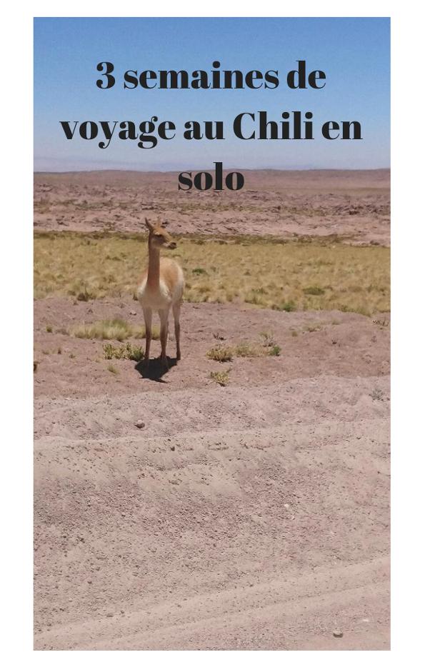 3 semaines de voyage au Chili seule