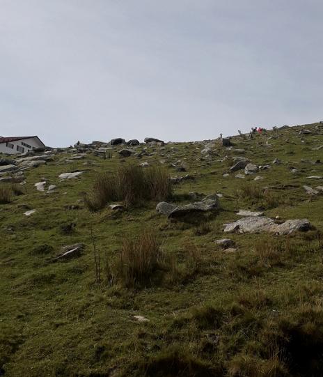visite rle pays basque en 8 jours
