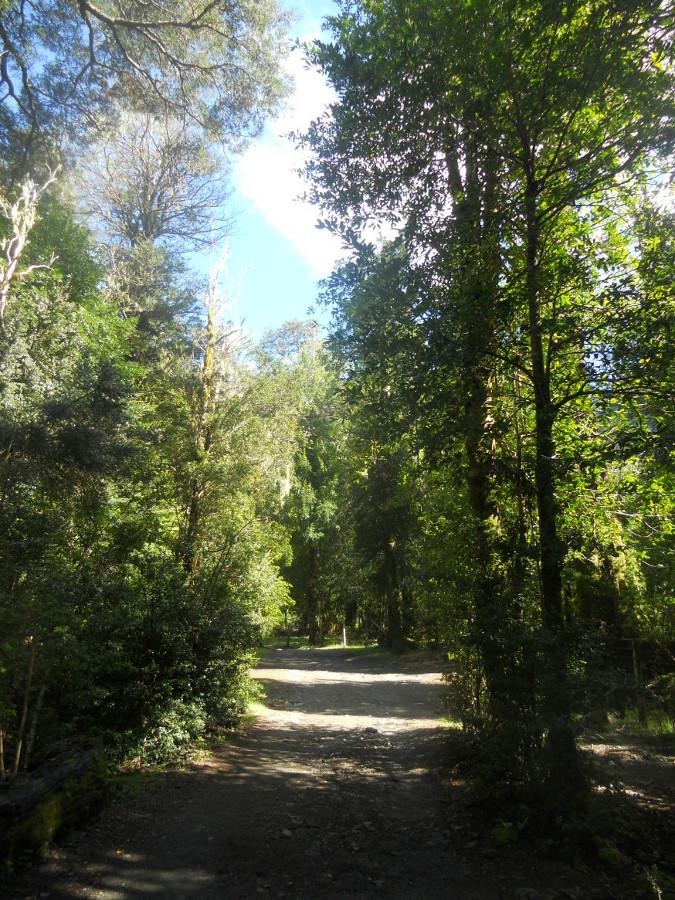 randonnée dans le parc de Herquehue