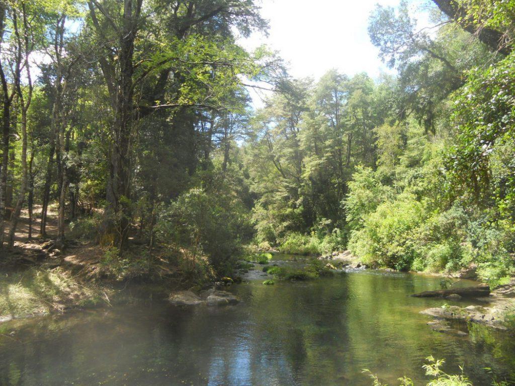 jolie cascade autour de Pucon