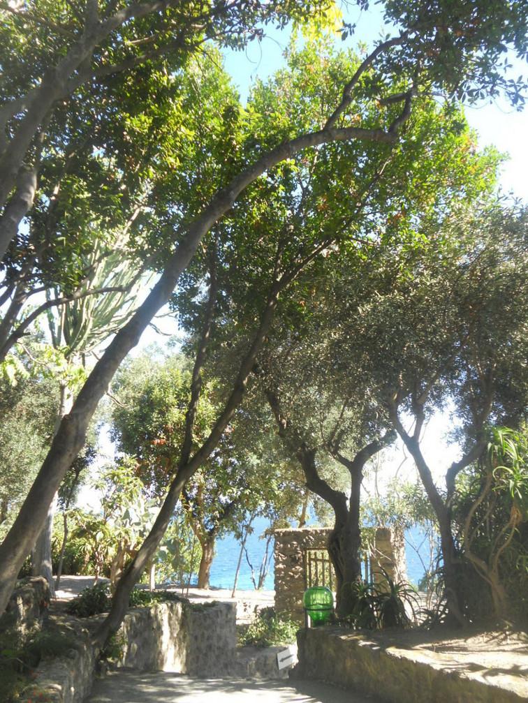 visite de Ischia en 2 jours