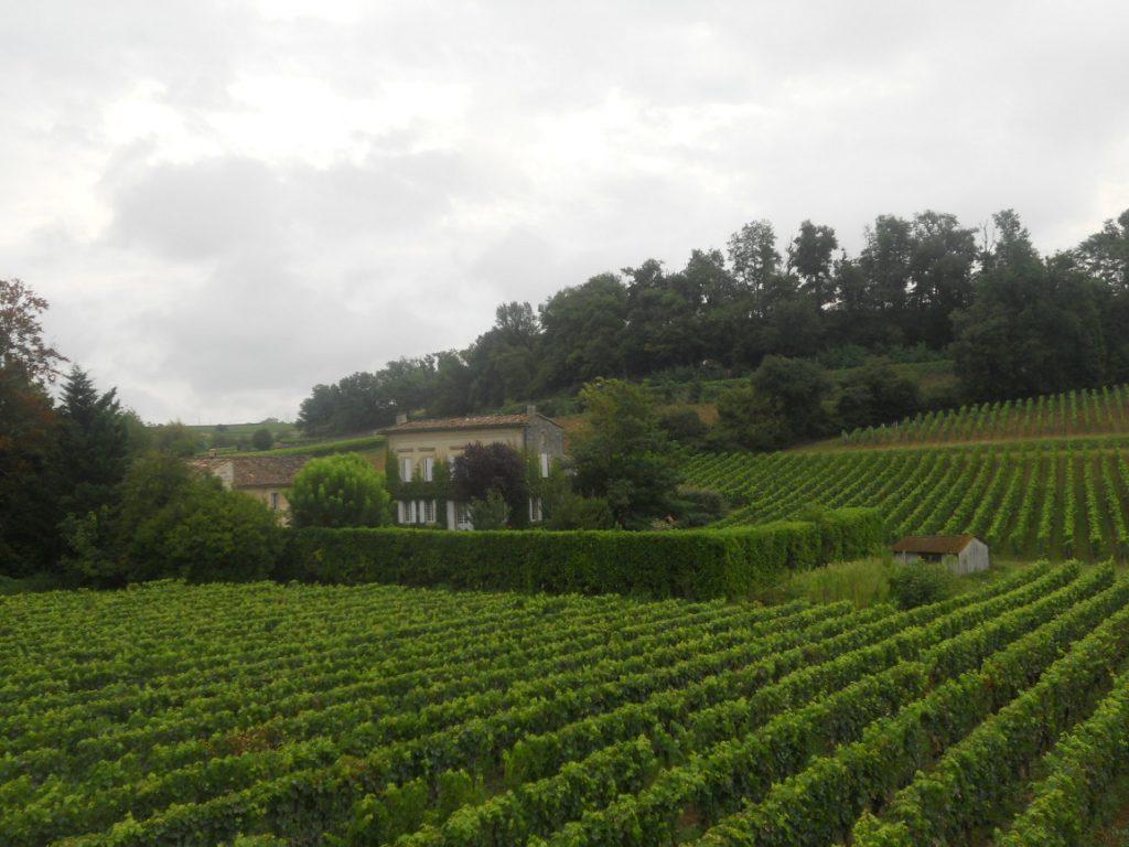 visiter Saint-Emilion un village viticole dans les alentours de Bordeaux