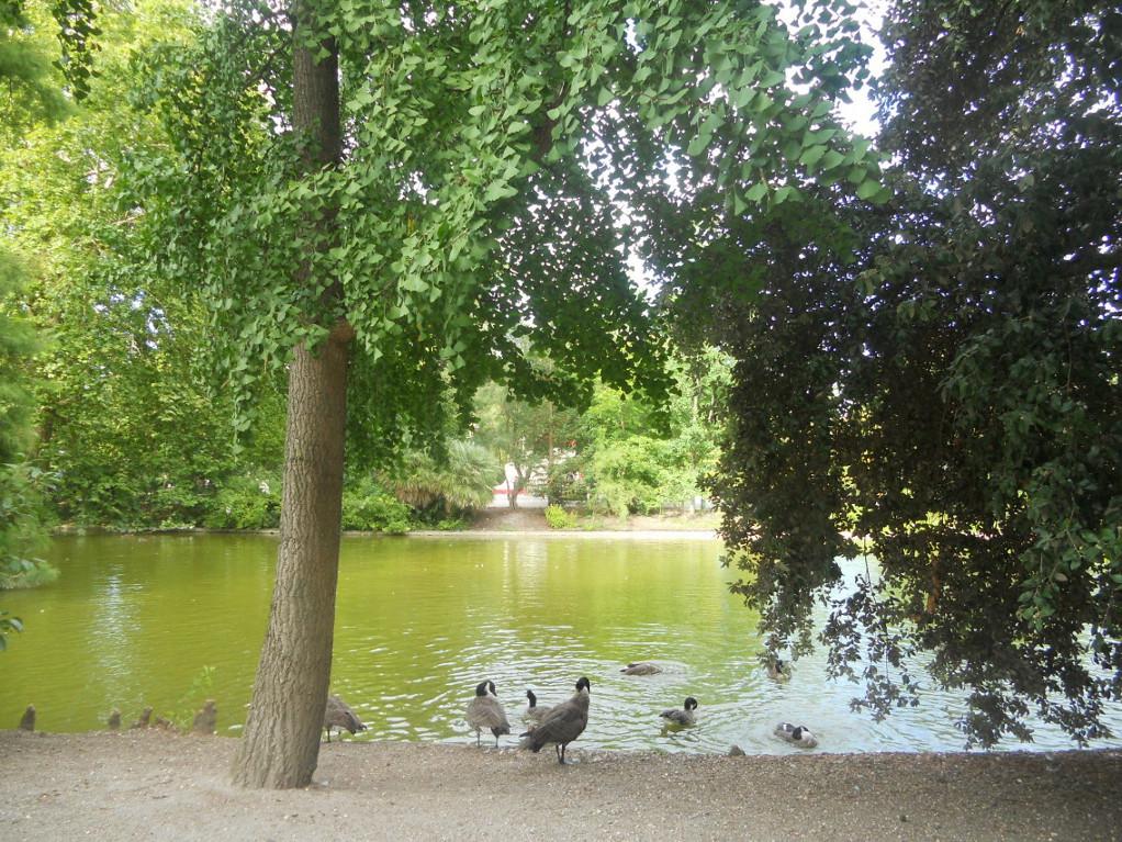 jardin public à voir à Bordeaux